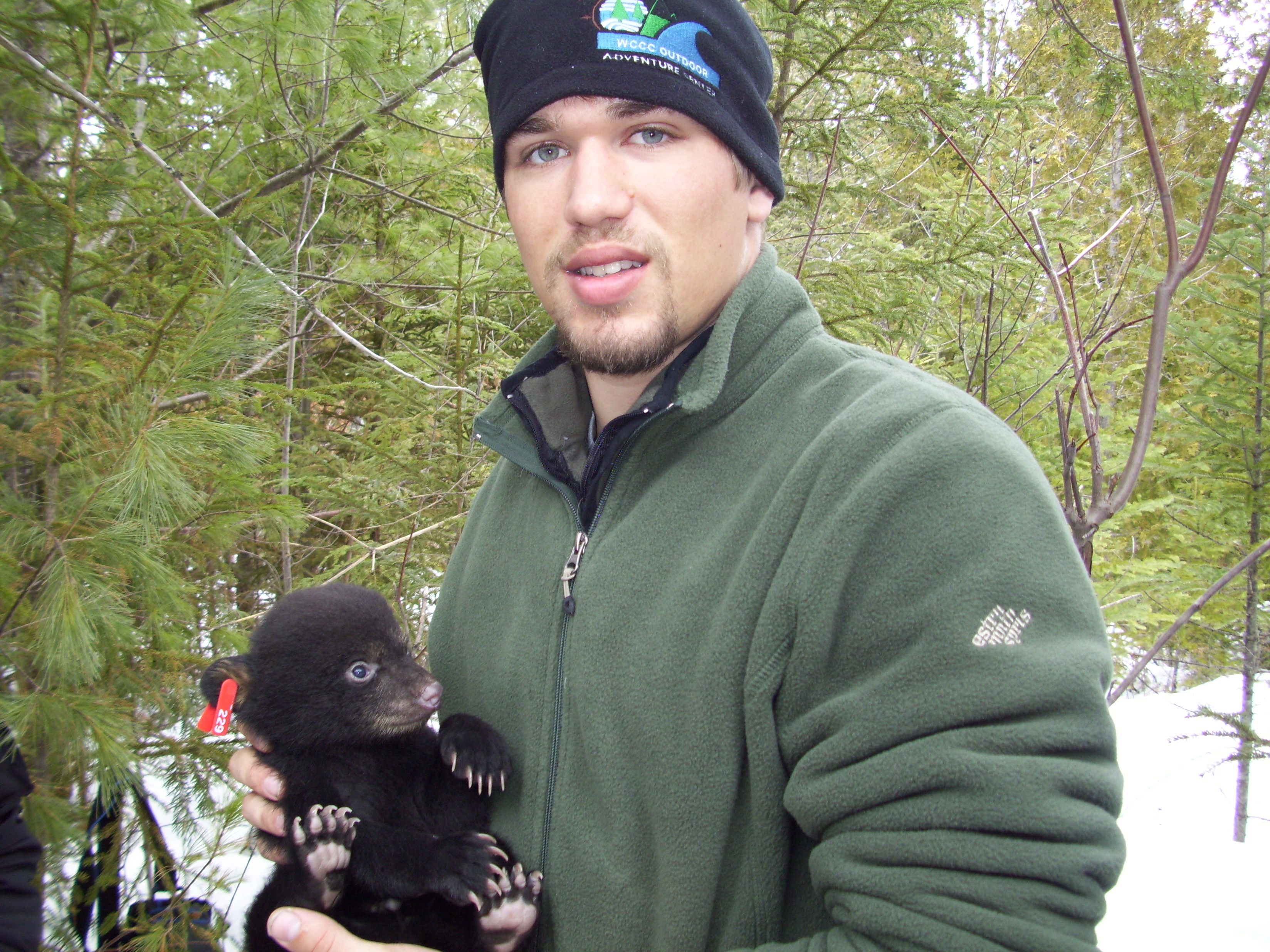 bears 053